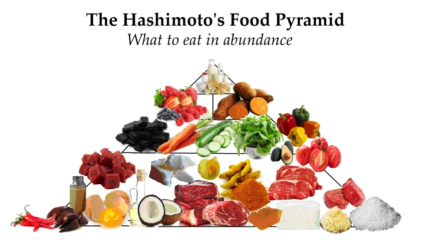 Hashi Food Pyramid
